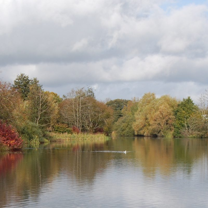 Copyright and credit: Moors Valley Country Park and Forest